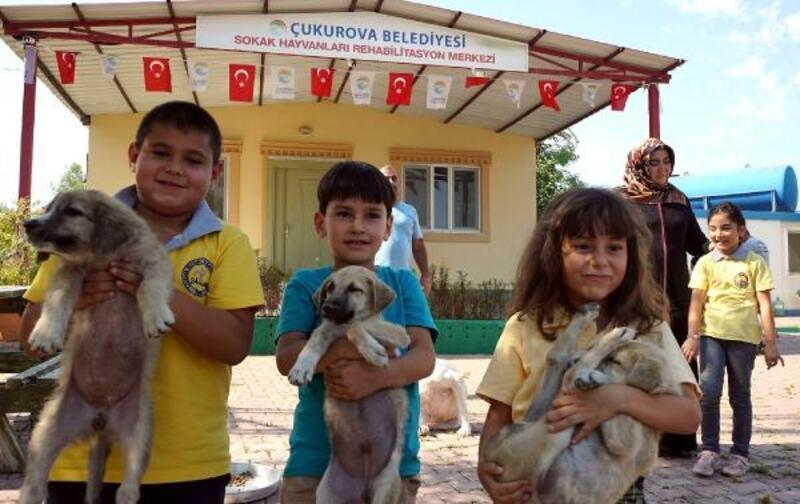 Çukurova'da keyifli barınak ziyaretleri