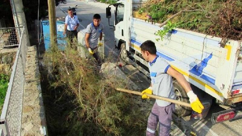 'Bodrum'da Doğa Kazanacak' sloganıyla temizlik seferberliği