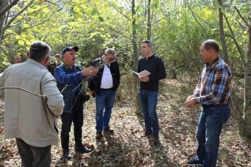 Kırklareli'de bal ormanı üreticinin yüzünü güldürüyor