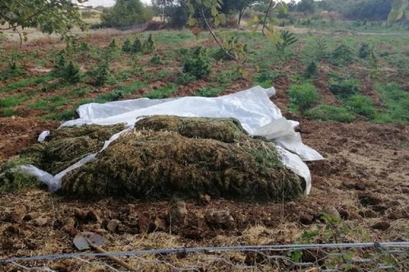 Lice'de narko-terör operasyonu; 4,5 ton esrar ve 185 bin kök Hint keneviri ele geçirildi