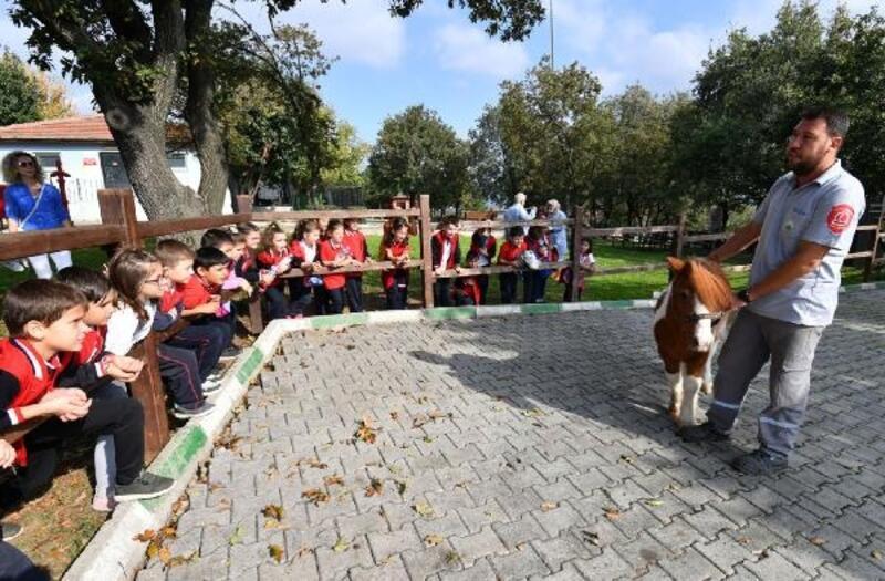 İlkokul öğrencilerinden sahipsiz hayvanlara süt ve mama yardımı