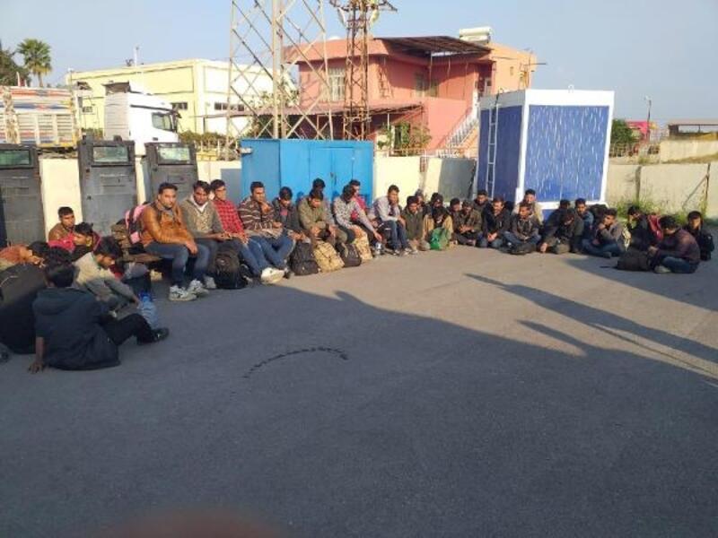 Adana'da 81 kaçak göçmen yakalandı