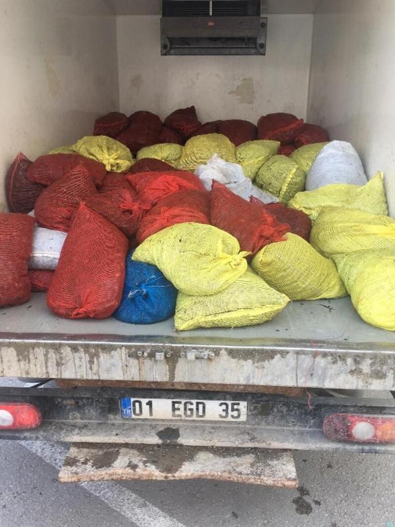 Edirne'de 1 ton 600 kilo kaçak midye ele geçirildi