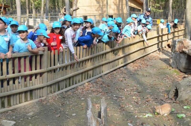 Polis çocuklar için 'Ormanya' gezisi düzenledi