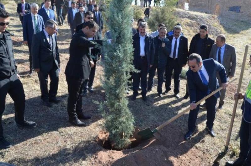 Aksaray'da 30 bin fidan toprakla buluştu