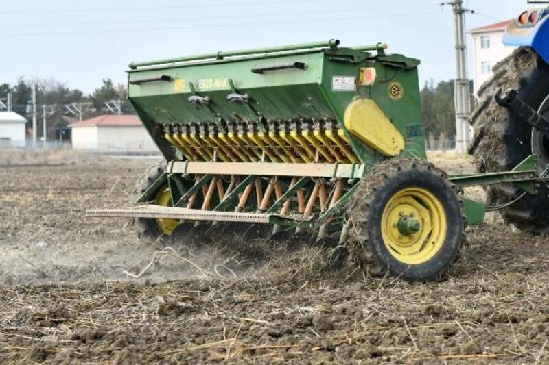 Başkent'te çiftçilere 400 ton ücretsiz yem bitkisi tohumu dağıtılacak