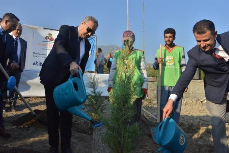 Uluslararası Turunçgil Kongresi Hatıra Ormanı oluşturuldu