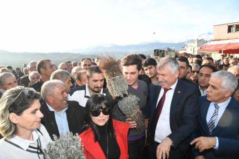 Büyükşehir Belediyesi'nden üreticiye 42 bin 500 lavanta fidesi