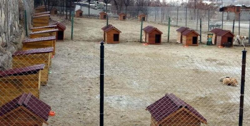 Erciş'e sokak hayvanları için kulübeler gönderildi