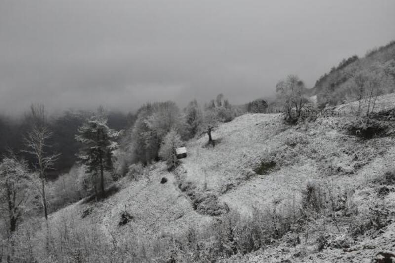 Küre Dağları milli parkı beyaza büründü