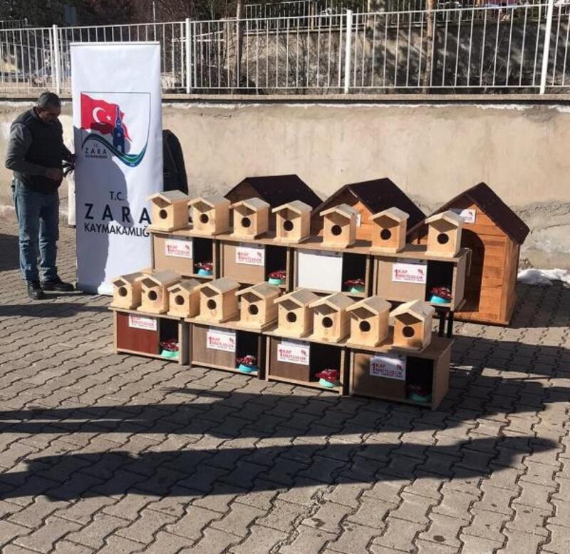 Zara'da kuşlar ve sokak hayvanları için yuva