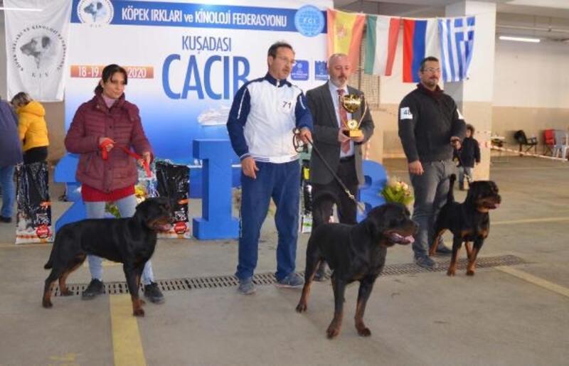 Köpek ırkları Kuşadası'nda yarıştı