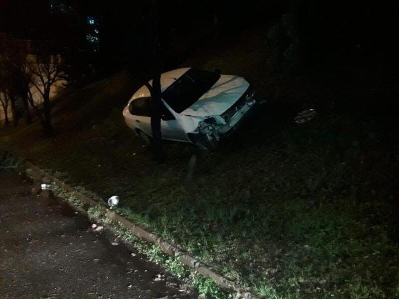 Otomobil ağaçlara çarptı