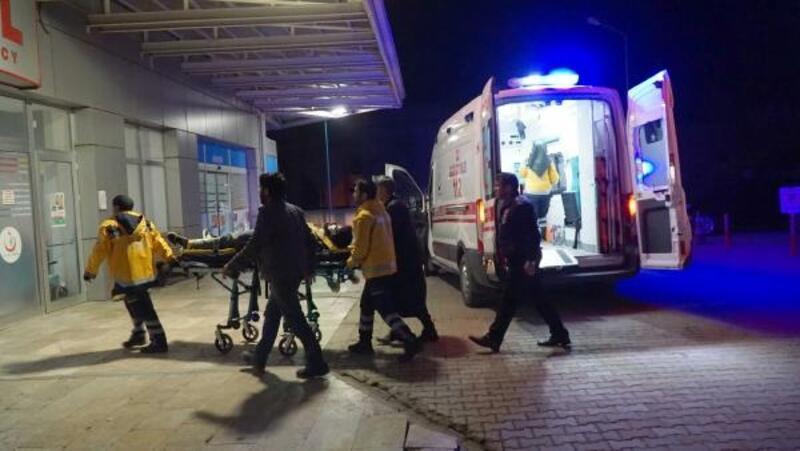 Adıyaman'da otomobilin çarptığı at öldü, 2 kişi yaralandı