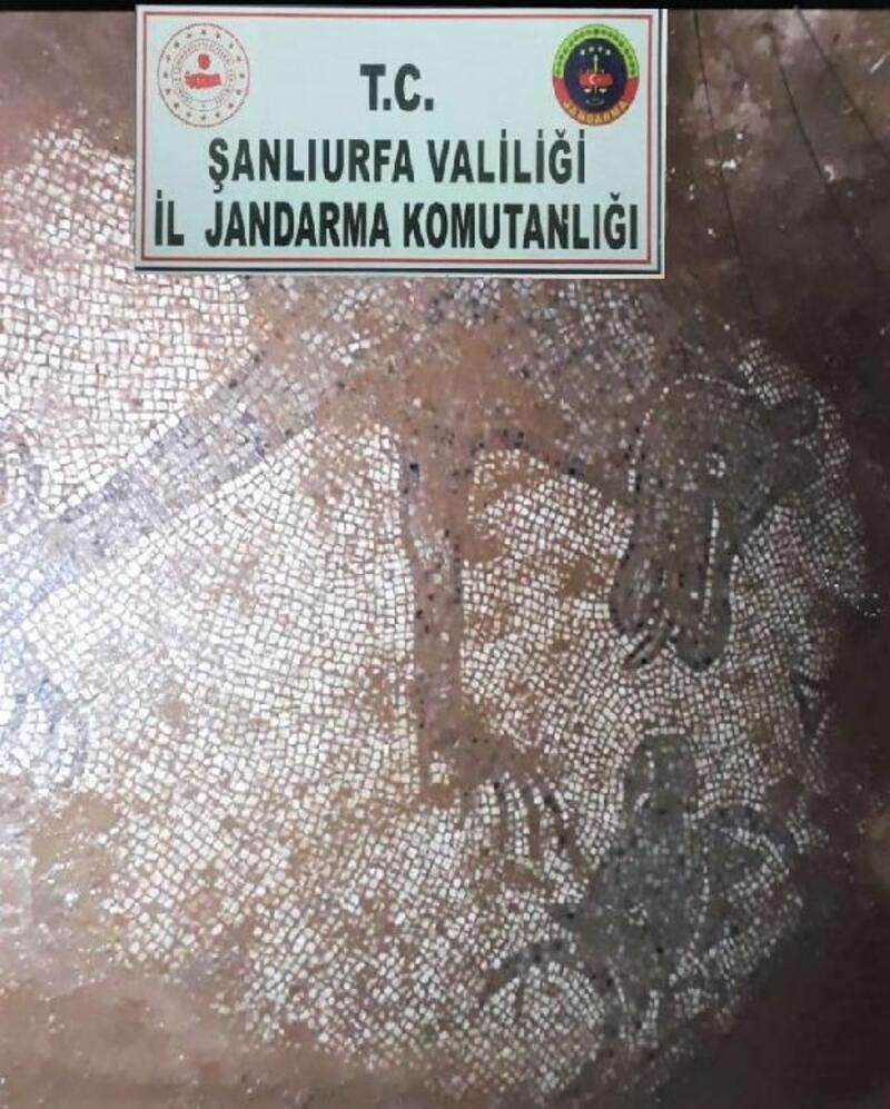 Kaçak kazıda Roma dönemine ait mozaikler bulundu