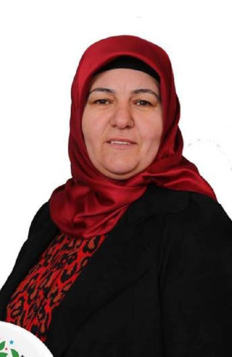 Erciş eski Belediye Başkanı HDP'li Çetin'in 15 yıl hapsi istendi