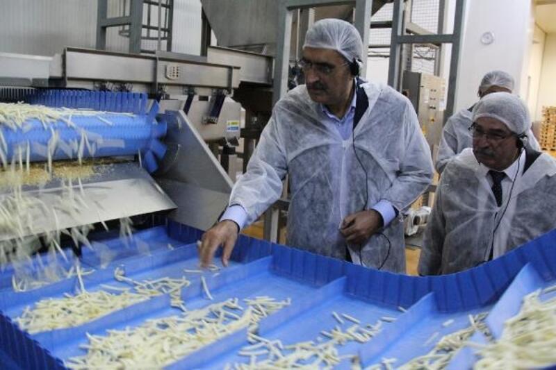 Konya Şeker'den patates ve soğan üreticisine 107 milyon ödeme