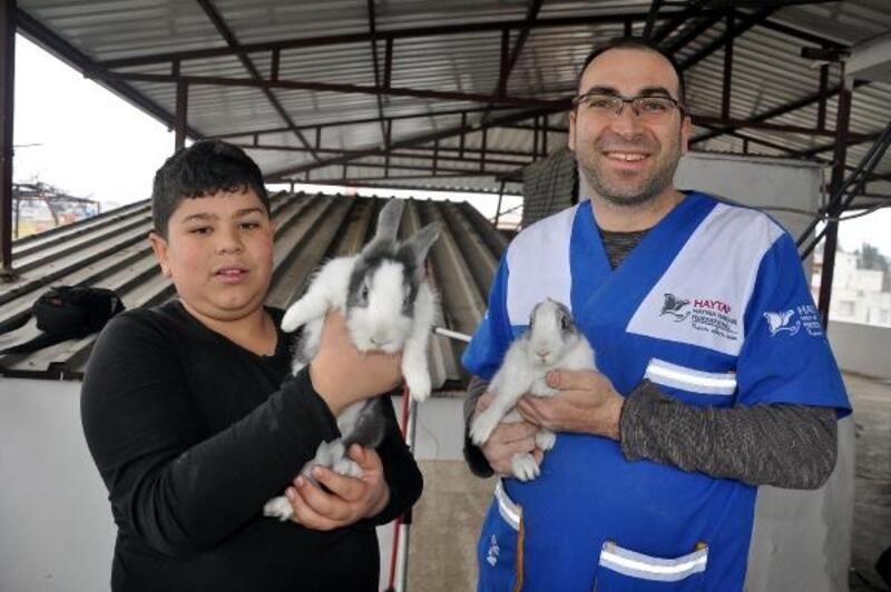 Evin havalandırma boşluğuna düşen tavşanlar kurtarıldı