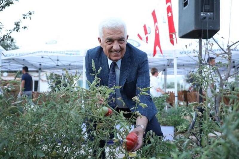 Muğla'nın yerel tohumları Türkiye'ye dağılıyor
