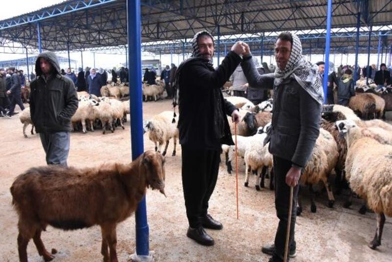 Güneydoğunun en büyük hayvan pazarı Siverek'te hizmete girdi