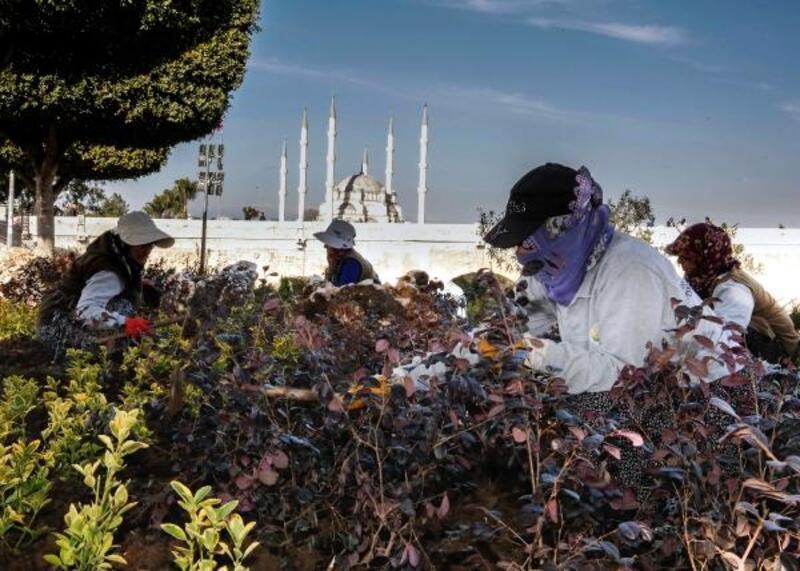 Adana'da parklarda çiçeklendirme çalışması