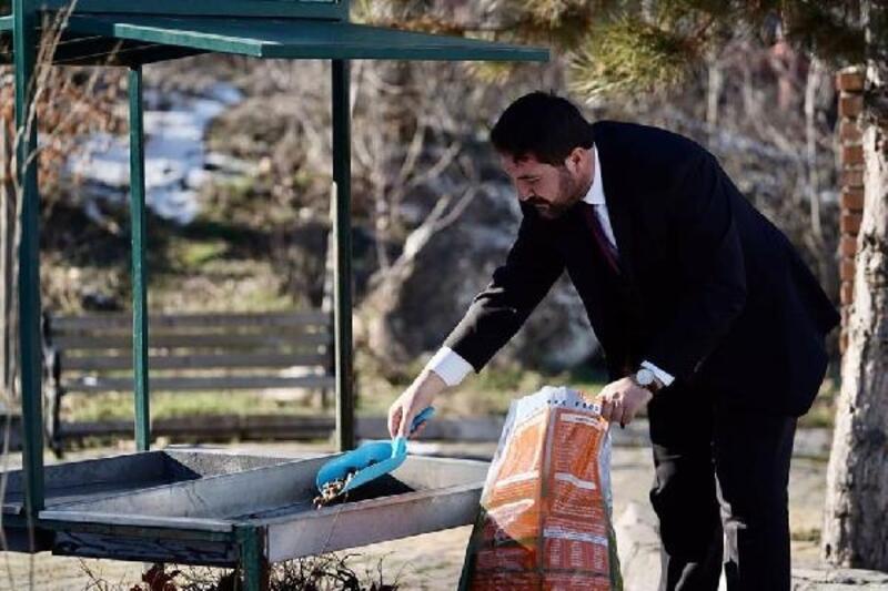 Turhal'da sokak hayvanları için parklara yem bırakıldı