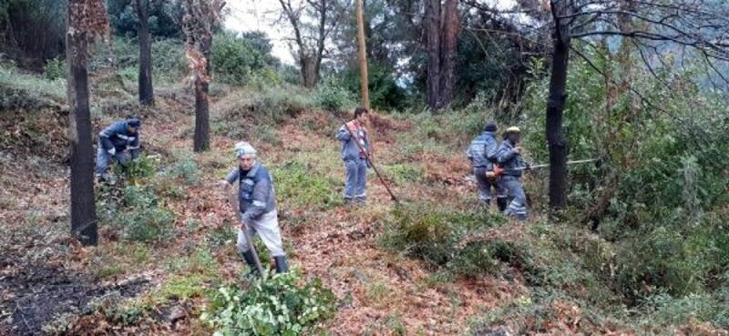Alanya'daki mezarlıklarda temizlik