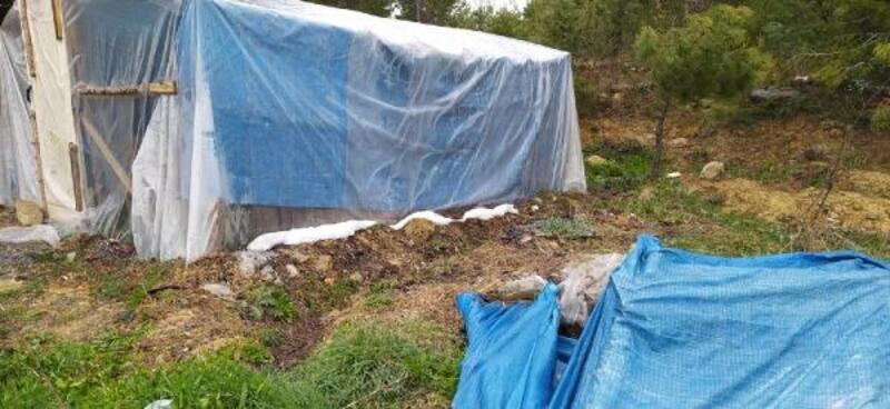 Arı kovanı bekçisi kömürden çıkan gazdan zehirlenerek öldü