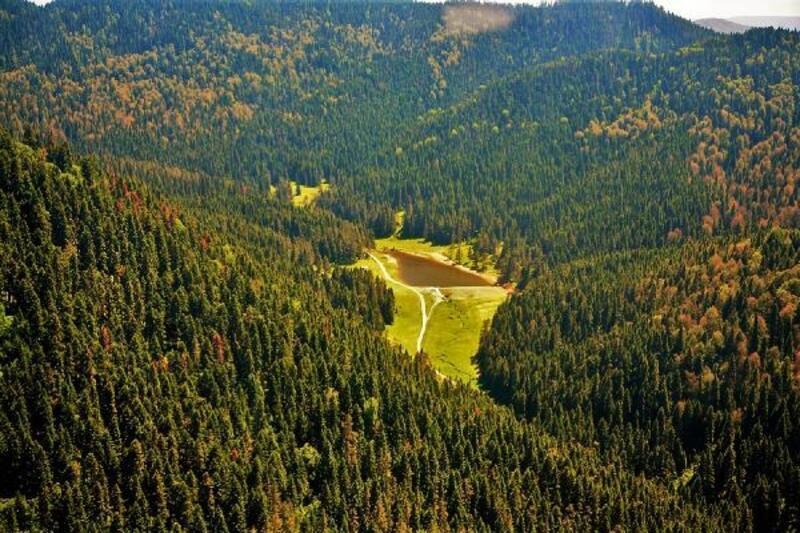 'Akdeniz Ormanlarının Entegre Yönetimi Projesi', en iyi 5 proje arasında
