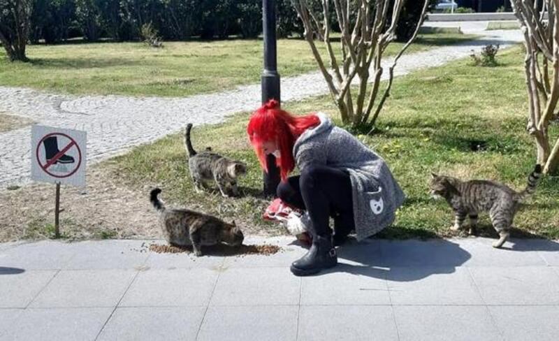 Manavgat'ta sokak hayvanları unutulmadı