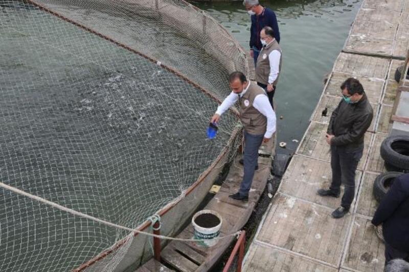 Balık çiftliklerinde üretimler devam ediyor