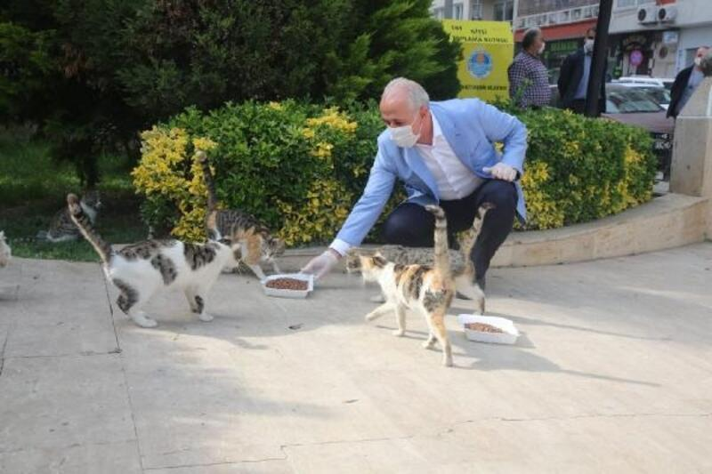 Sokak hayvanları için parklara mama ve su bırakıldı