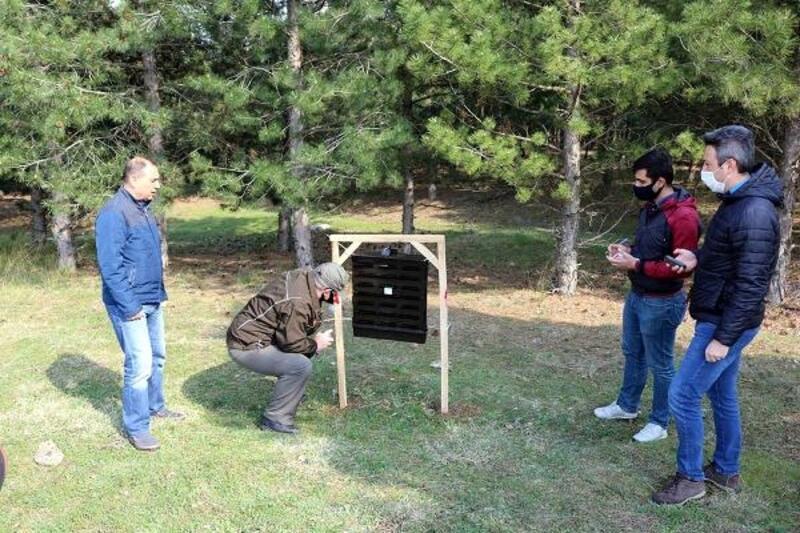 Karaçam ormanlarına radyatör tipi tuzaklar asıldı
