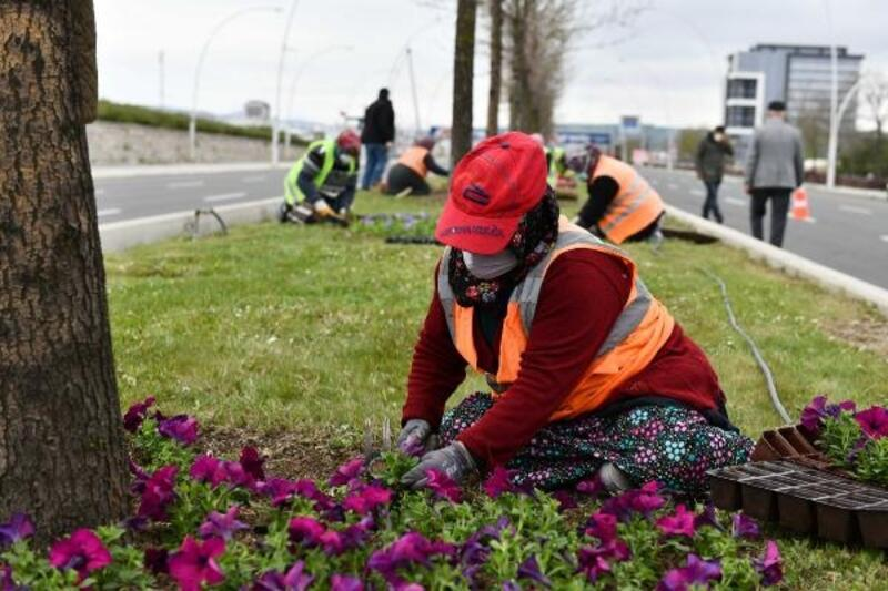 Başkent'te sosyal izolasyonda kalan vatandaşlar için çiçek ekimi