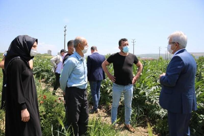 Nilüfer Belediye Başkanı Erdem'den enginar üreticisine destek