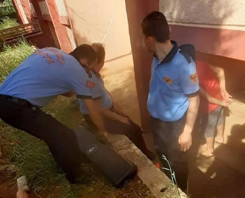 Su borusuna sıkışan yavru kedi kurtarıldı