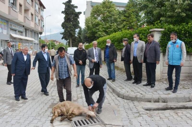 Dinar'da şükür kurbanı kesildi
