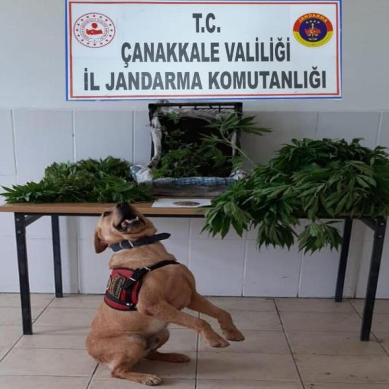 Çanakkale'de 'Roket'li uyuşturucu operasyonu: 2 gözaltı