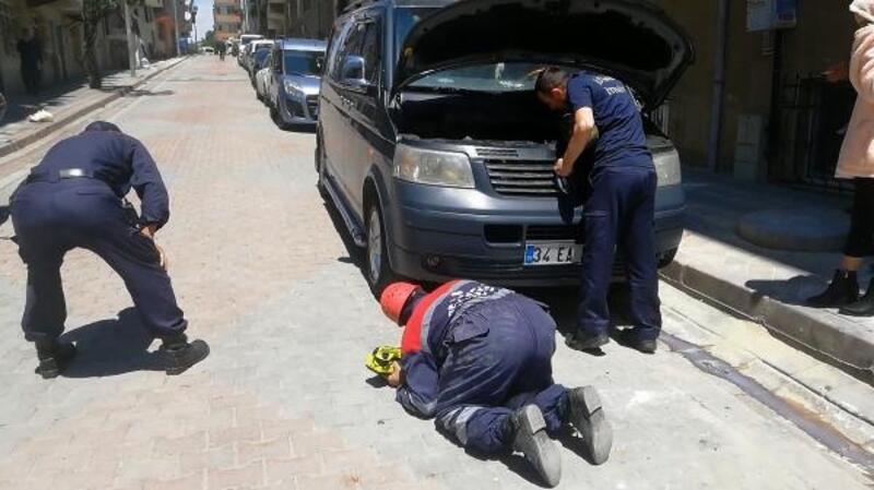 Sultangazi'de minibüsün motoruna giren yavru kedi böyle kurtarıldı