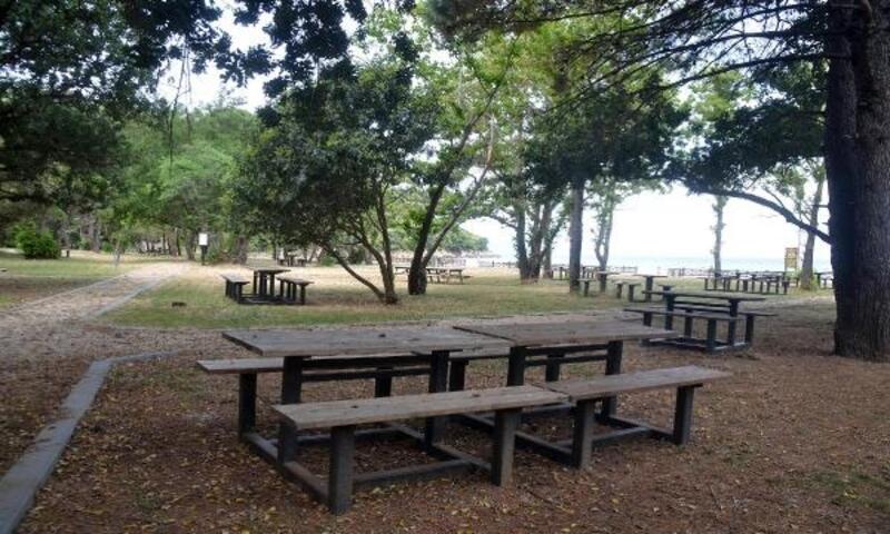 Dilek Yarımadası Milli Parkı, ziyarete hazır