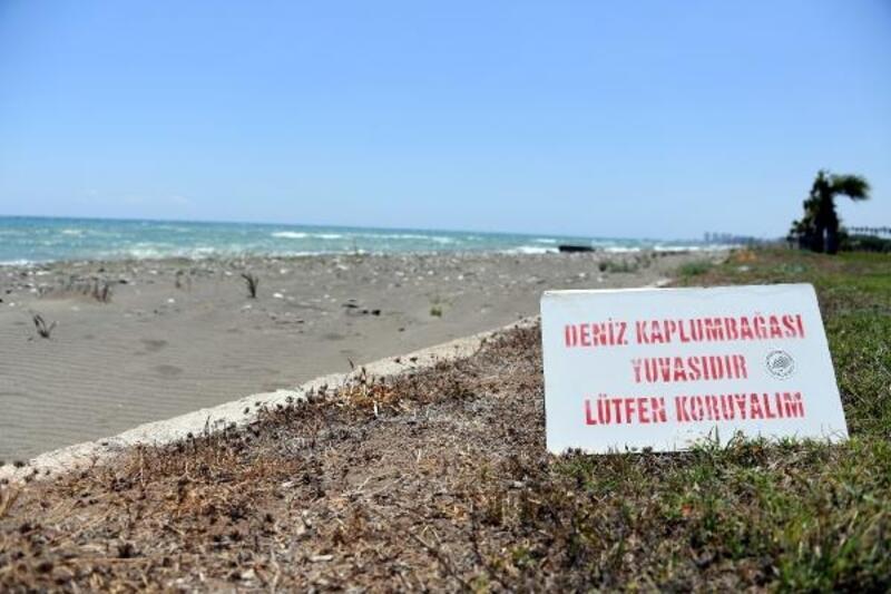 Mersin sahillerinde temizliğe 'caretta caretta' hassasiyeti
