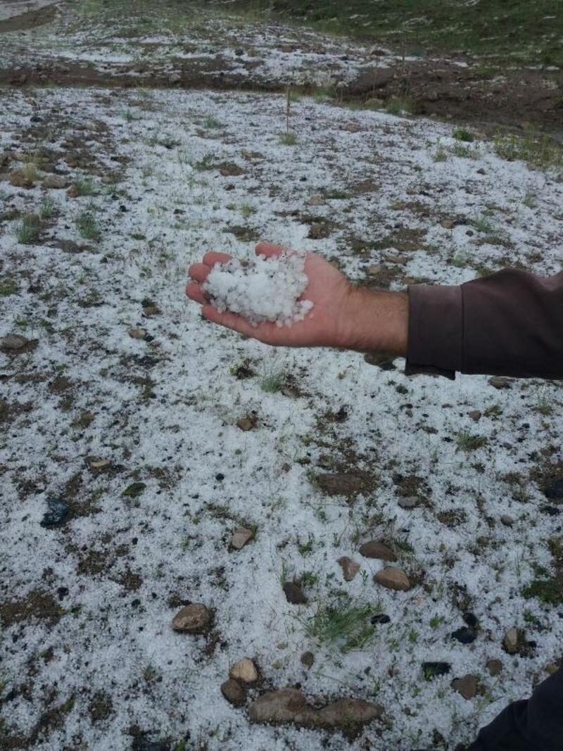Nevşehir'de ekili arazileri dolu vurdu