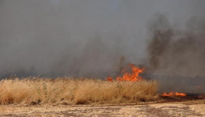 İslahiye'de anız yangını