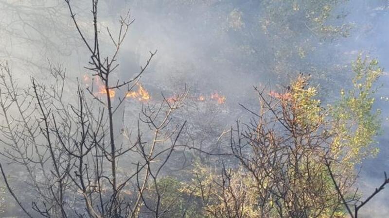Yangında 2 dönüm makilik zarar gördü
