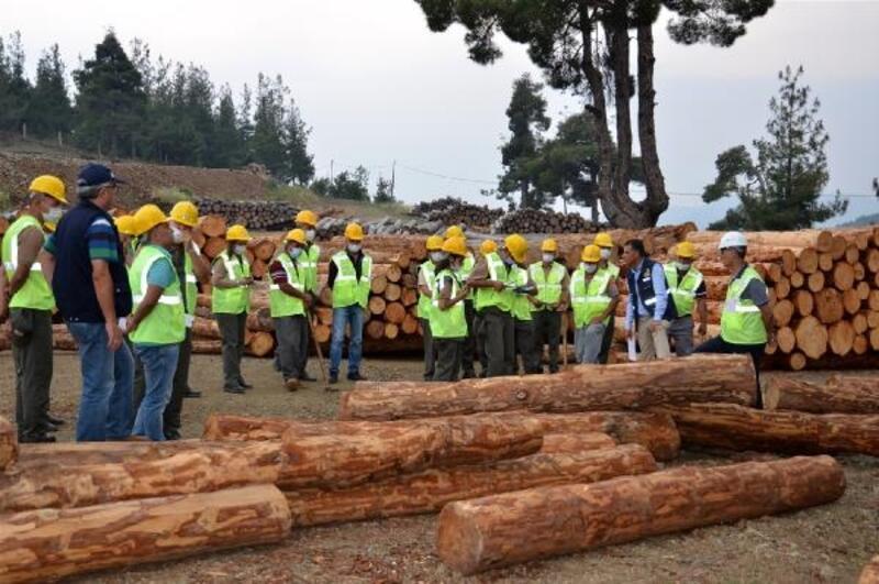 Mersin'de ormancılara işletme pazarlama eğitimi