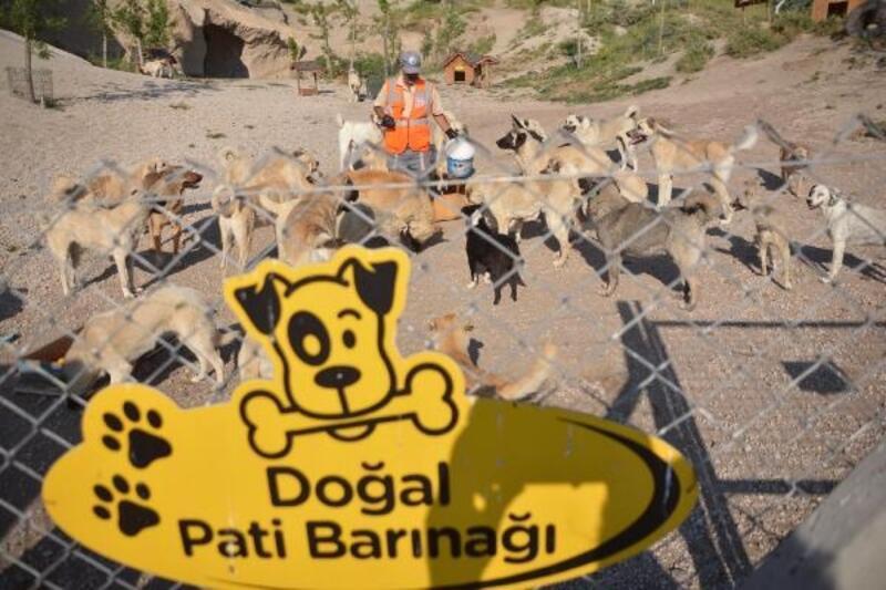 Koronavirüs engeline takılan 'Patiköy' yeniden açıldı