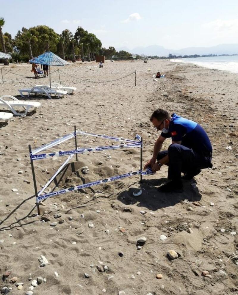 Deniz kaplumbağası yuvası korumaya alındı