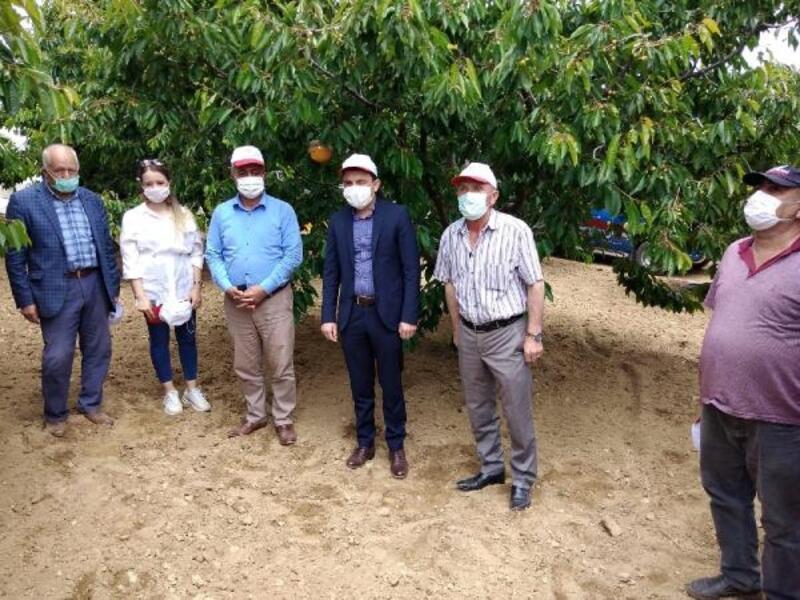 Ulukışla'da çiftçilere Akdeniz meyve sineği tuzağı dağıtıldı