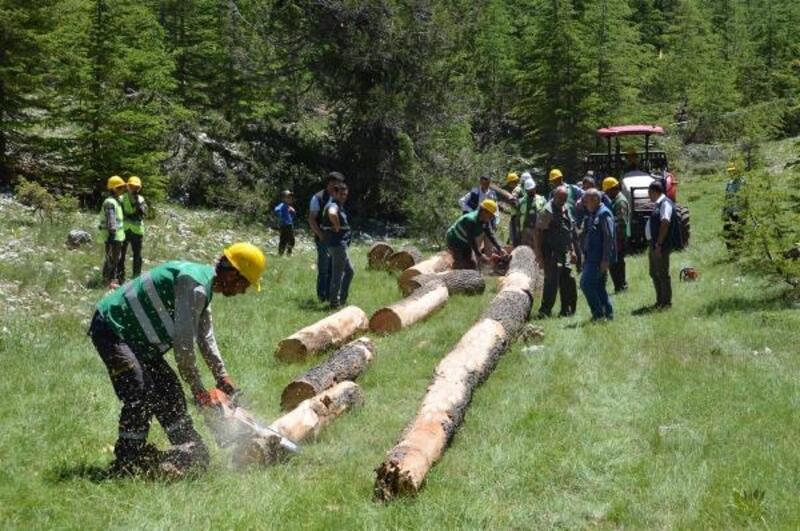 Orman Bölge Müdürü Akduman: Üretmek ve geliştirmek zorundayız