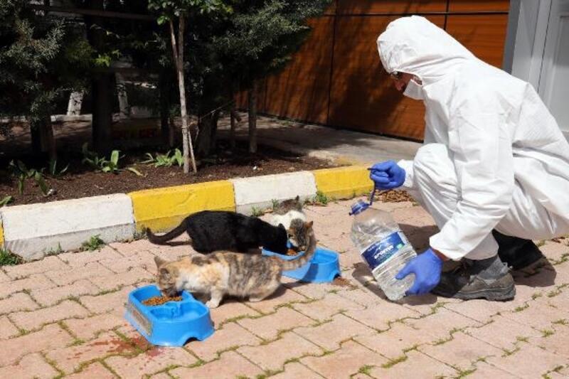Konya Büyükşehir Belediyesinden 'Bir kap yemek, bir kap su' kampanyası